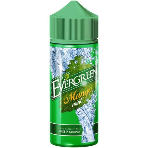Evergreen - Mango Mint Aroma