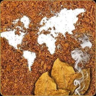 Dark Burner - Tabak Earth 10 ml Aroma